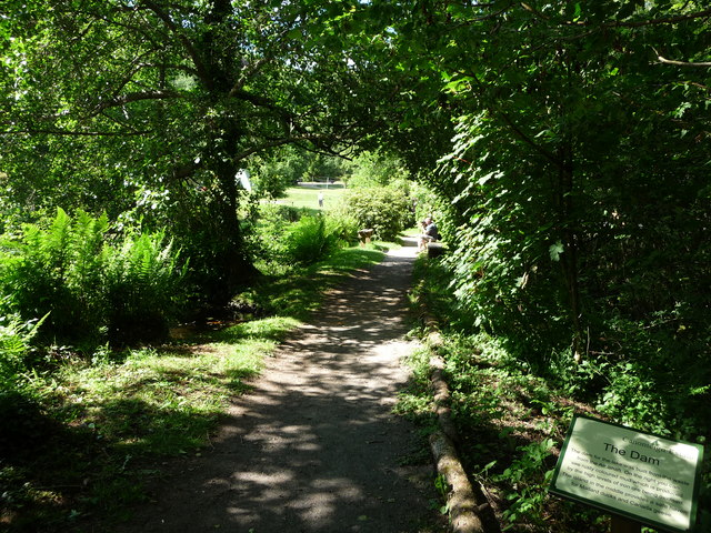 Canonteign Falls : Lily Lake Path