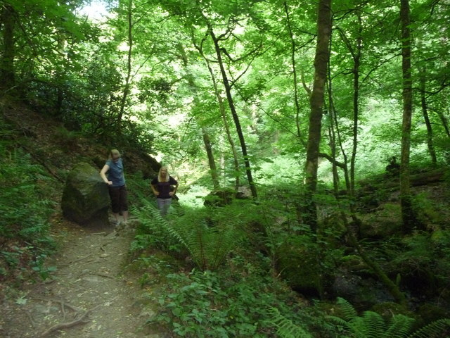 Canonteign Falls : Path up the Hill