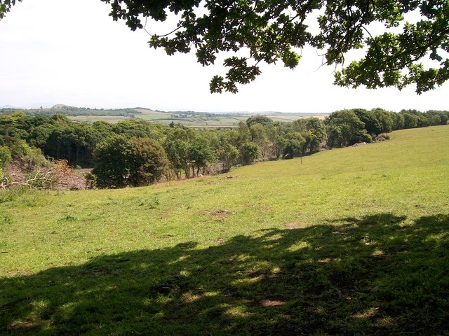 View across pasture land to the eastern section of the Nant y Gledrydd woodlands