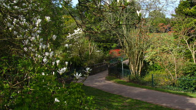Spring in Belle Vue park