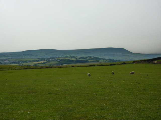 Pasture north west of Sweet Well House