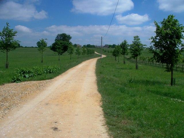 Driveway to Stepmoles