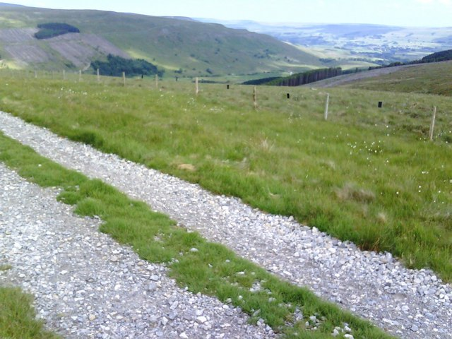 Moorland track and forestry
