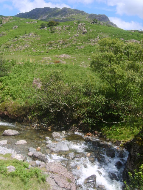 Nether Beck