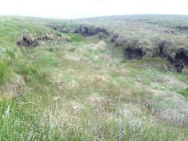 Off-footpath moorland view