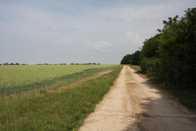 Farm track at Heath Road