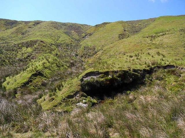 Hillside above the Afon Llwyd
