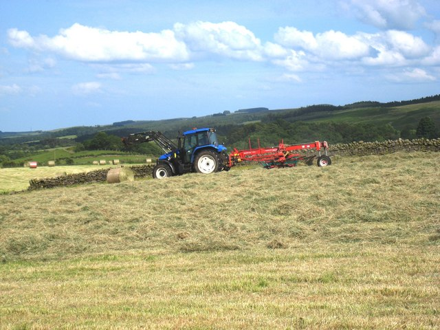 Haymaking near Haltwhistle