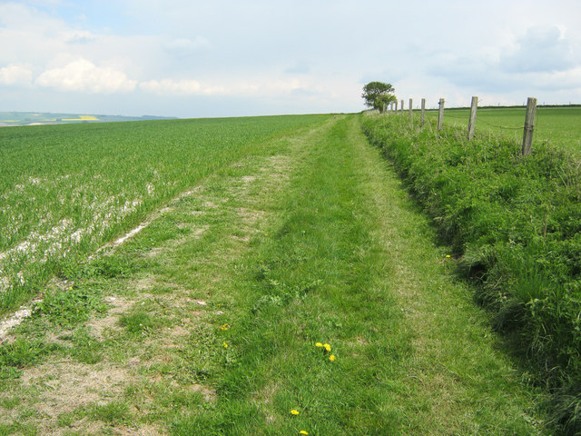 Grass track on All Cannings Down