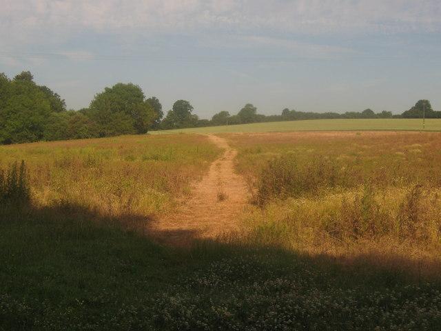 Footpath towards Hill Hoath