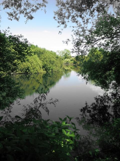 River Calder - Foxholes
