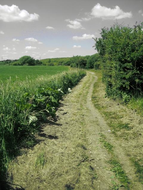 Public Footpath, Foxholes