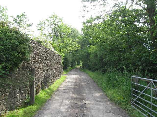Track from Lower Monubent Farm