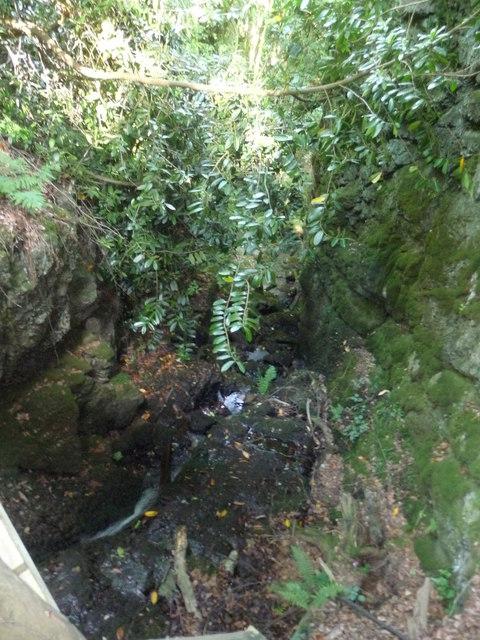 Canonteign Falls : Stream