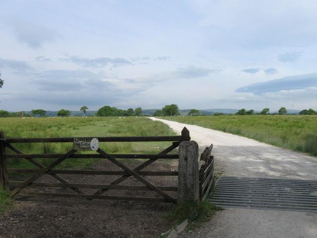 Farm access tracks, Monubent