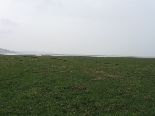 Grange-over-Sands, saltmarsh