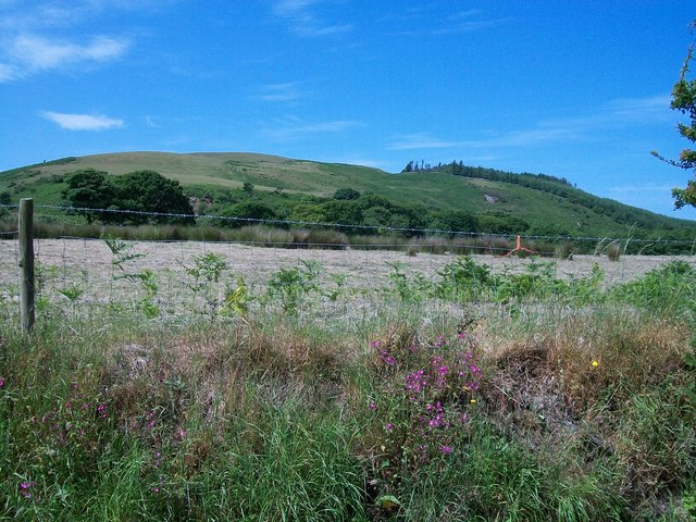A mown hayfield with Moel Caerau in the background