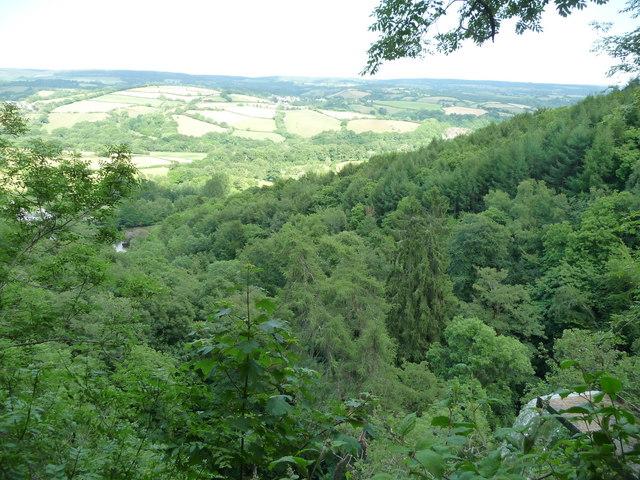 Canonteign Falls : Buzzards View