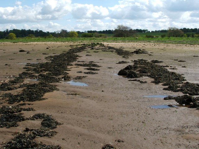 Supposed remains of a Roman causeway