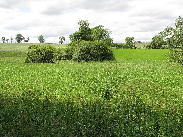 Bemersyde Moss