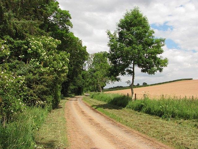 Minor road by Bemerside Moss
