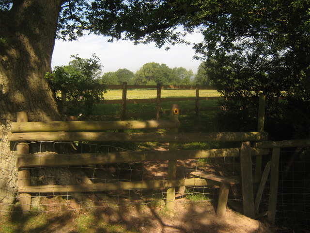 Footpath junction near Pigdown Farm