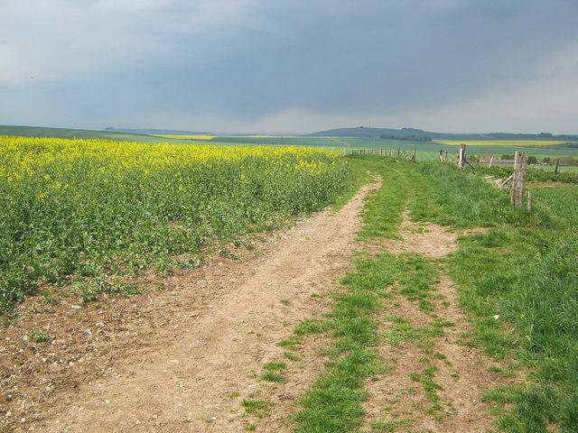 Farm track on Thorn Hill