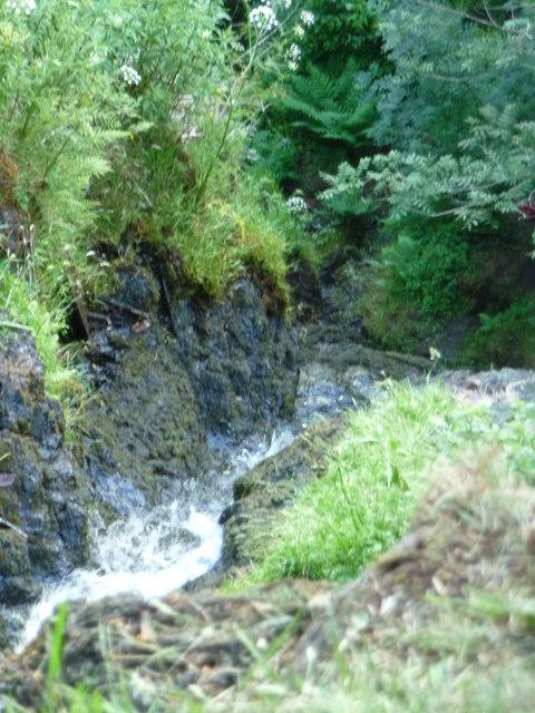 Canonteign Falls : 220ft Waterfall
