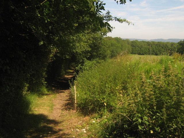 Footpath towards Cow Lane