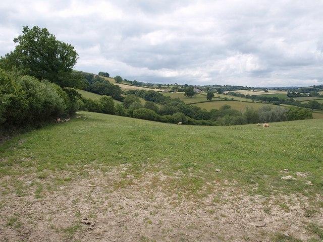Field beside Pool Hill