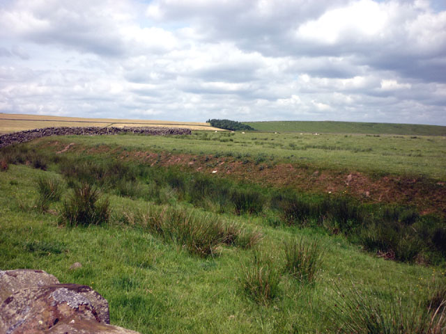 The forward defensive ditch of Hadrian's Wall
