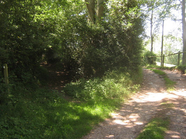 Bridleway junction near Bridle Lane Farm