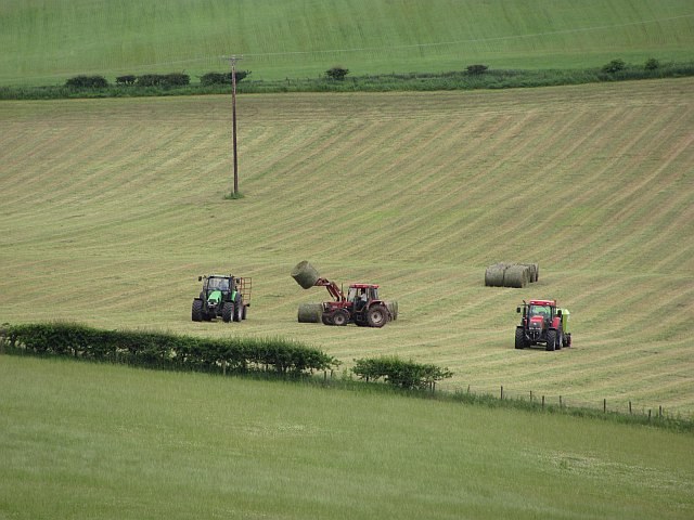 Round bale silage, Bemersyde Hill