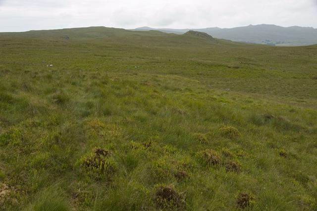 Moorland under Green Crag
