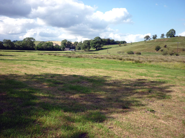 Pasture land beside Tipalt Burn, Greenhead