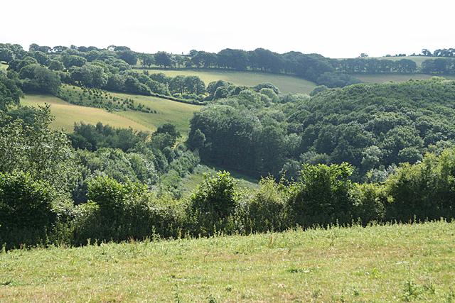 West Buckfastleigh: Lakemoor Wood