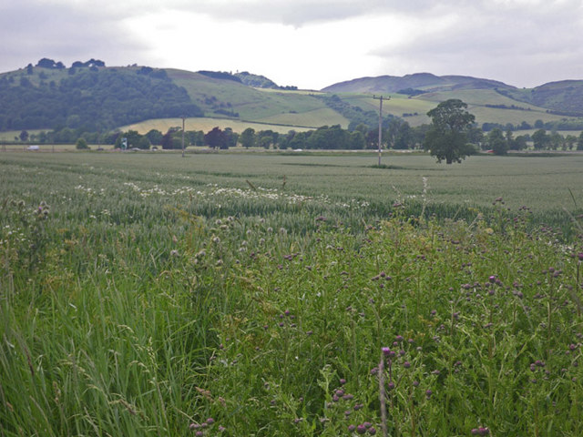 Looking toward the dual carriageway and hills beyond