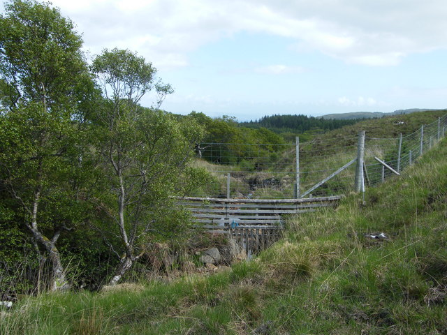 Feeder stream to Lochan an Doire Dharaich