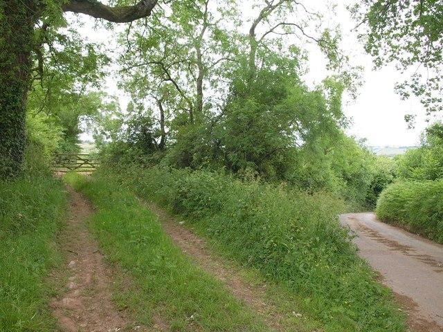 Track by the lane near Tracebridge