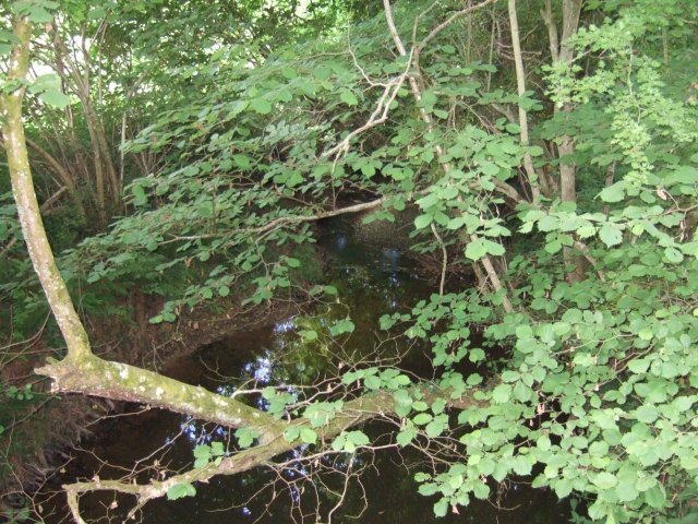 Stream south of Leys Cross