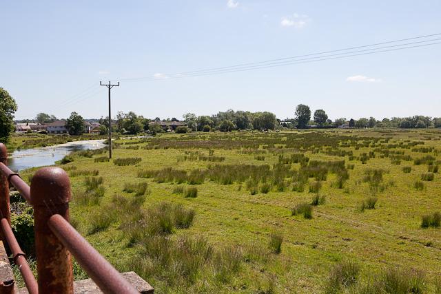 Forbidden Access Land west of Bickerley Millstream