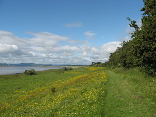 Footpath mown through nature reserve on the North bank of the Tay