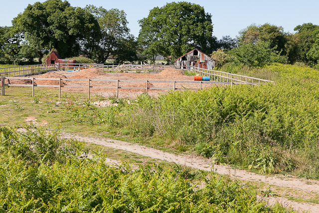 Smallholding near Dean's Farm, Kingston