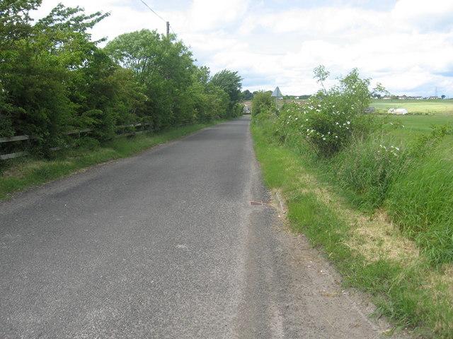 The road heading North to Longforgan