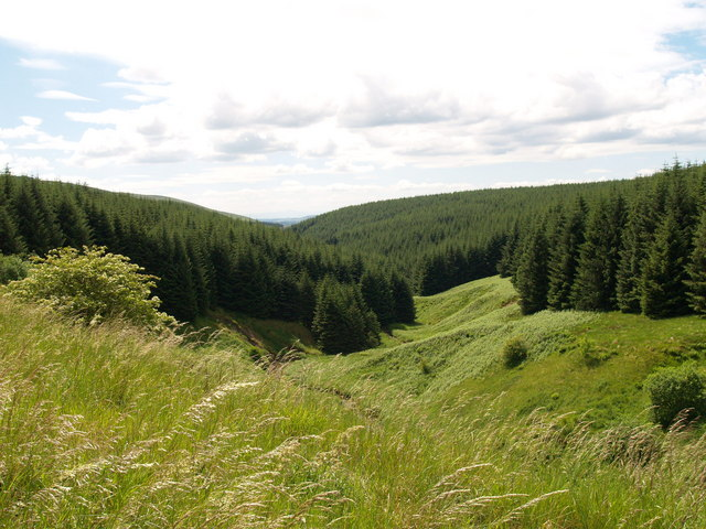 Laidlehope Burn Valley