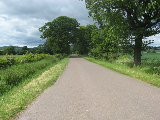 The road heading North from Rawes Farm to Castle Huntly
