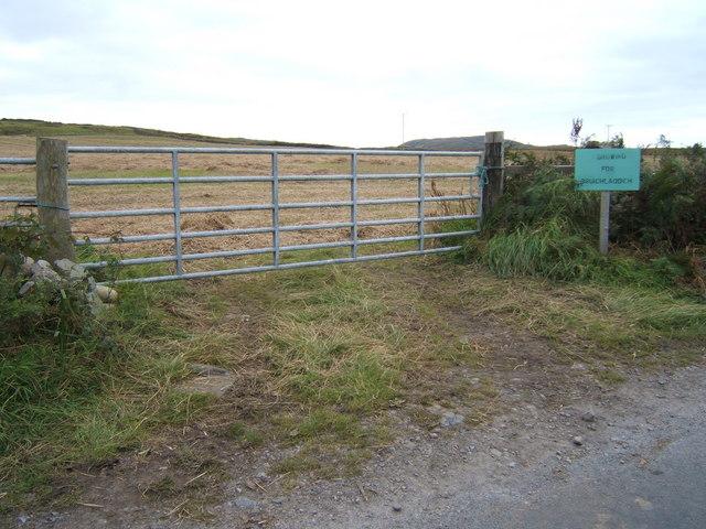 Barley-field for Bruichladdich