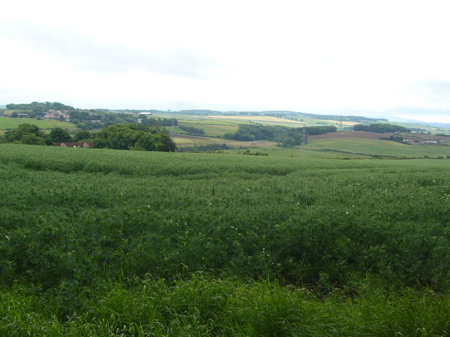 View from Carberry Hill