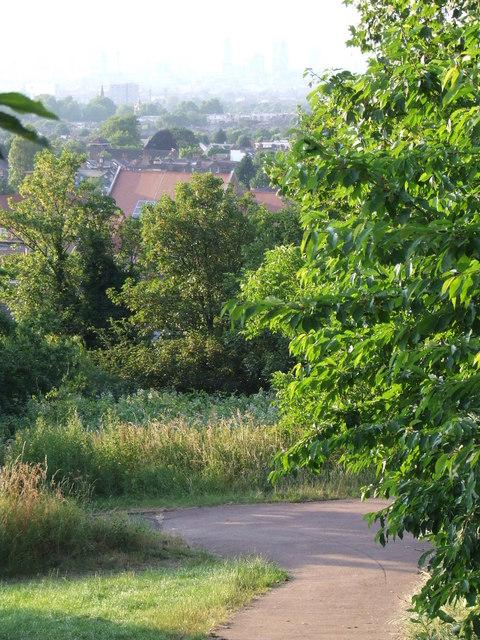Dawson's Hill, SE22