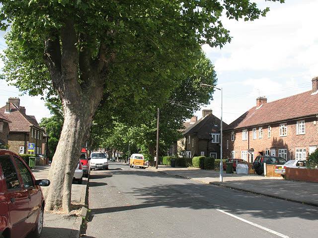 King Alfred Avenue, Bellingham